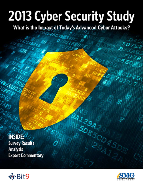 2013 Cyber Security Study